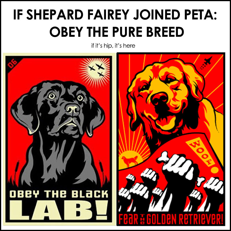 obey the pure breed posters
