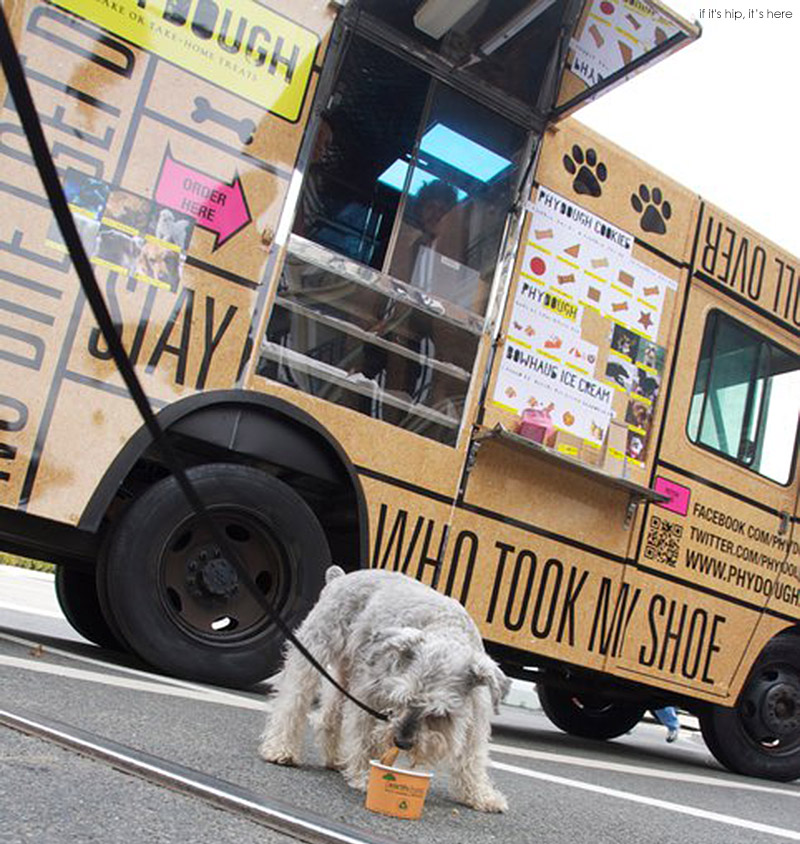 PhyDough Food Truck for Dogs