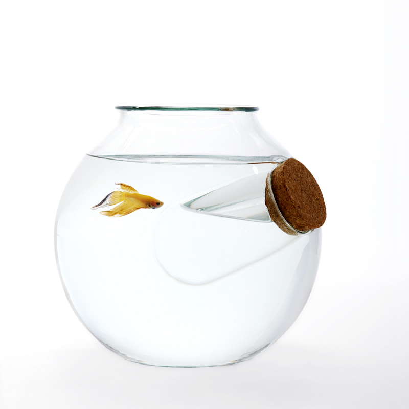 Unusual blown glass fish bowls by roger arquer if it 39 s for Fish bowl fish