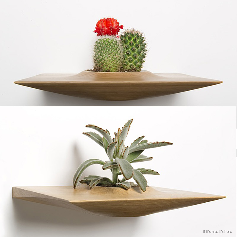 Modern Wall Planters: Mid-Century Modern Wall-Mounted Plant Pods For Succulents