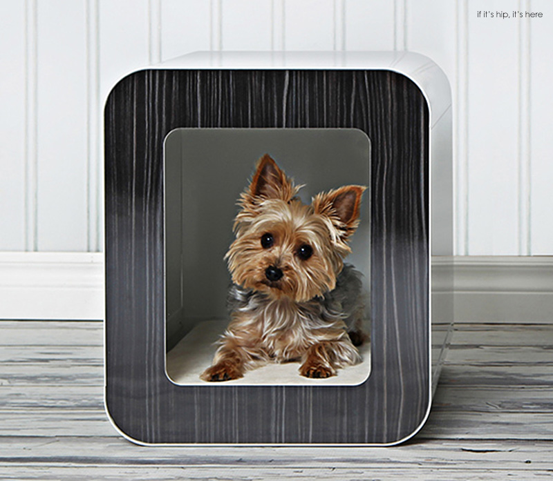 Kooldog house a contemporary and stylish indoor home and for Design indoor dog crate