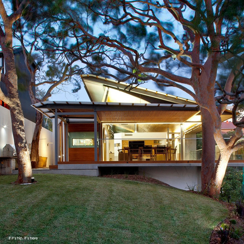 Angophora House by Richard Cole Architecture