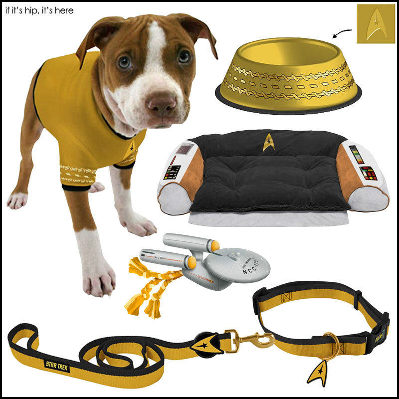 Star Trek Boldly Goes To The Dogs Beds