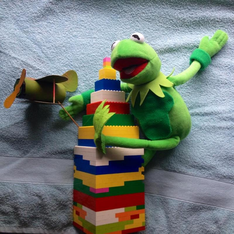Kermit in King Kong (Caters News)