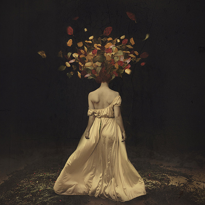 the falling of autumn darkness