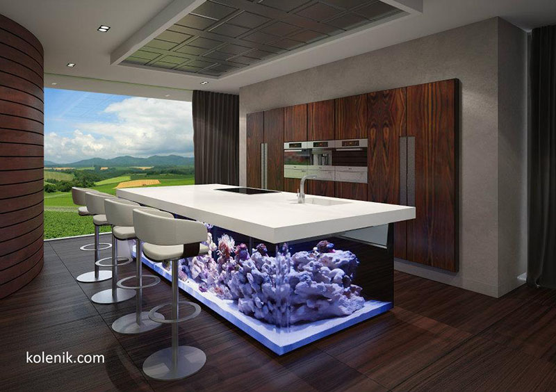 The ocean kitchen by robert kolenik eco chic design if for Eco fish tank