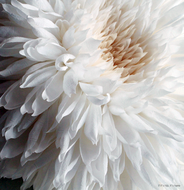 These Paper Flowers by Tiffanie Turner Are Incredibly Lifelike. Until You See Their Size.
