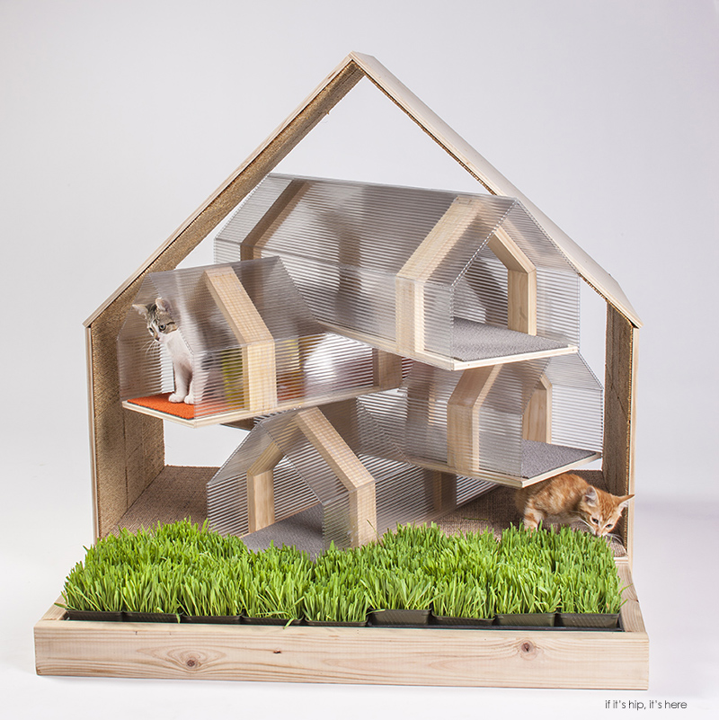 Cool Cribs for Cats
