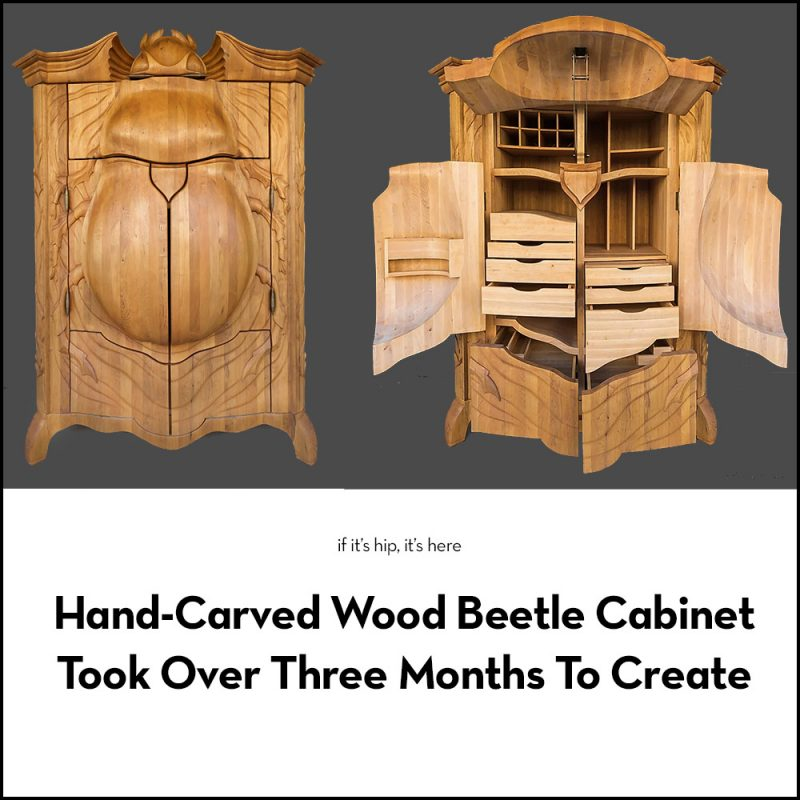The Carved Beetle Cabinet by Janis Straupe