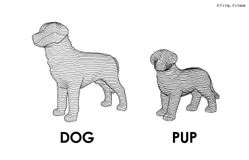 dog and pup size relationship