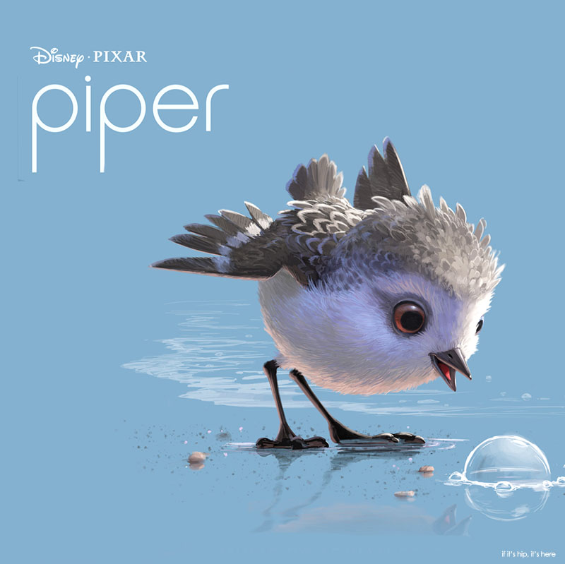 pixar u0026 39 s piper animated short is 6 minutes of adorable