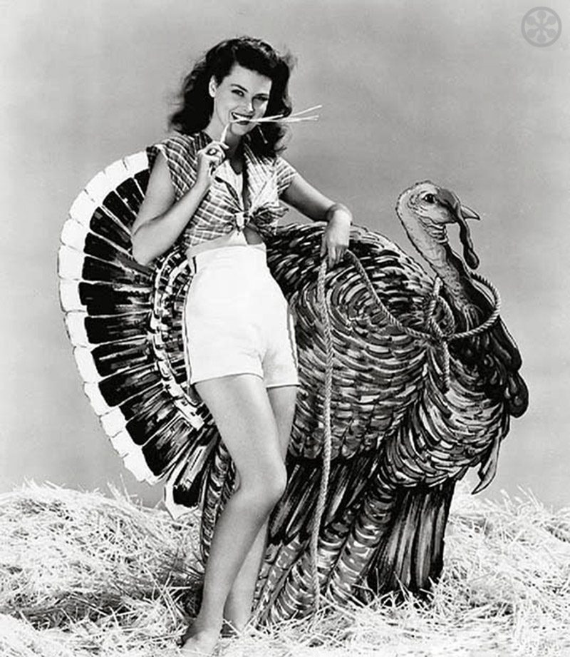 Dusty Anderson vintage Hollywood Thanksgiving photo