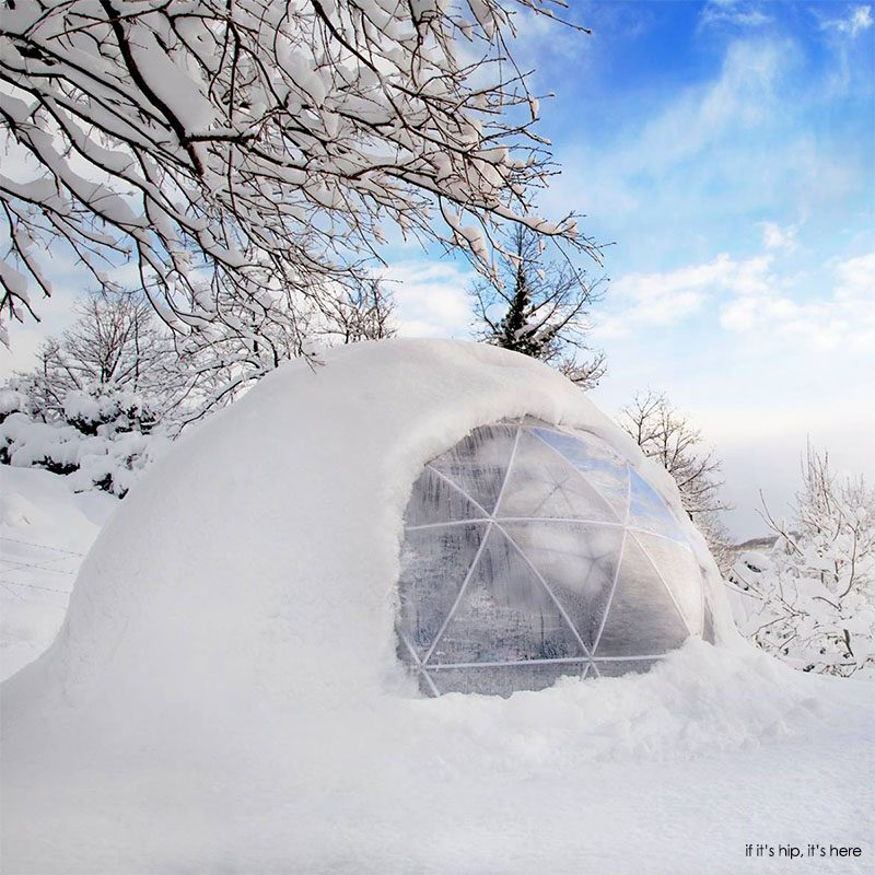 Get Your Own Garden Igloo A Geodesic Dome Tent