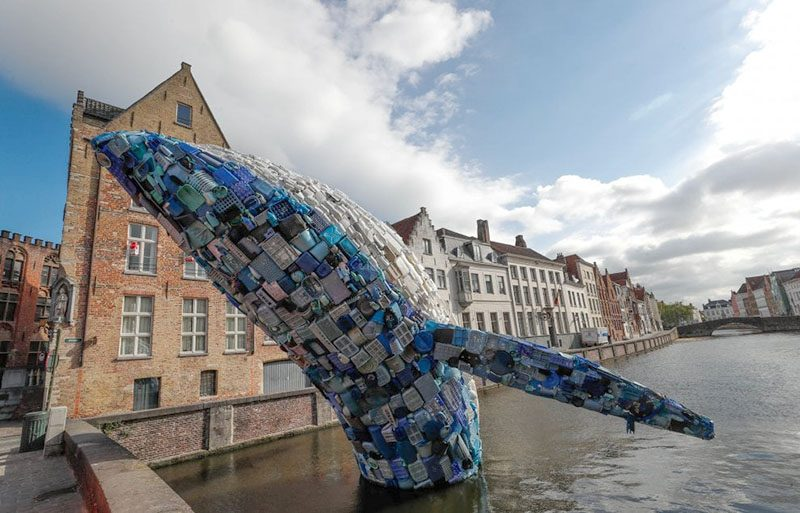 Whale Made Of Plastic Ocean Waste Breaches Brugges Canal