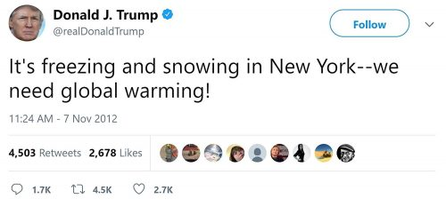 Read more about the article This Trump Global Warming Snow Globe Is Hilarious