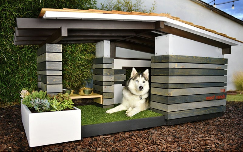 woofranch dog house