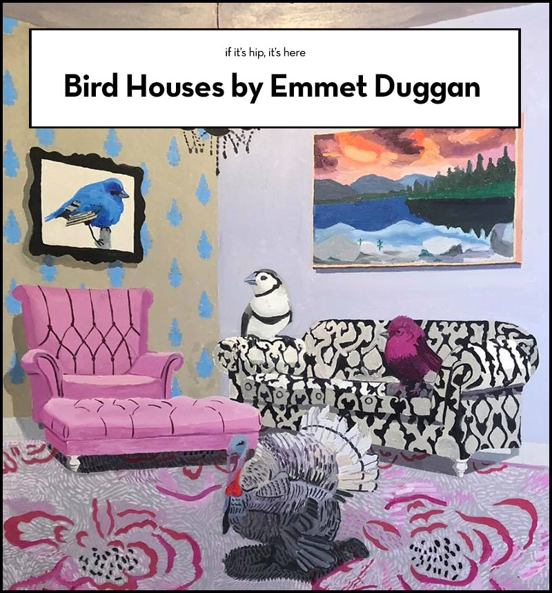 Bird Houses by Emmet Duggan