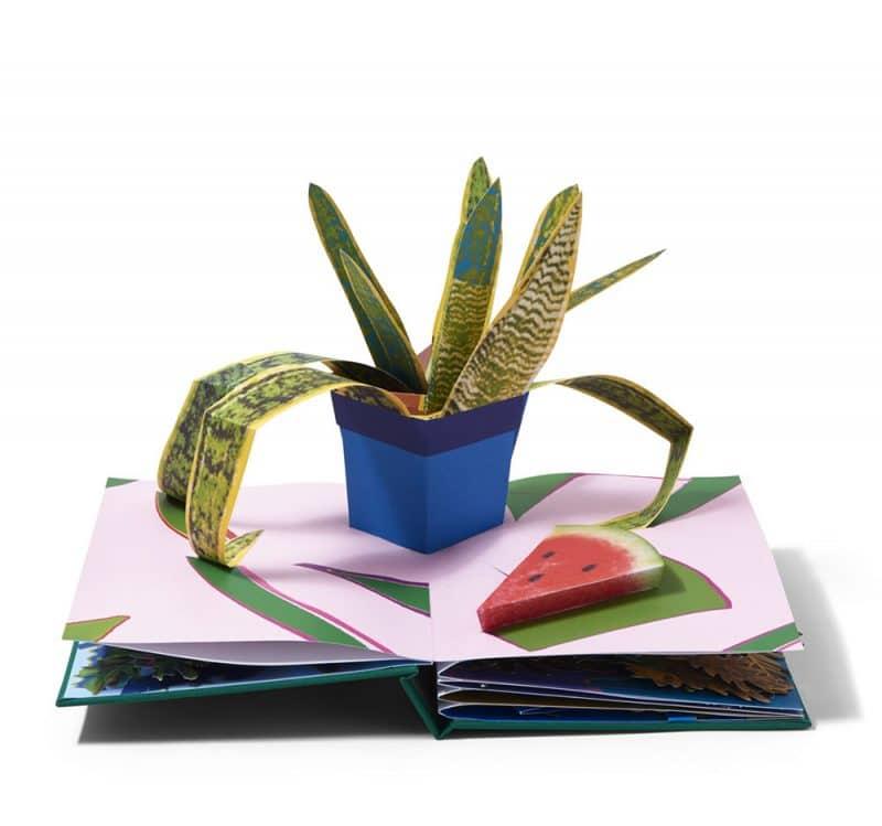 houseplants book