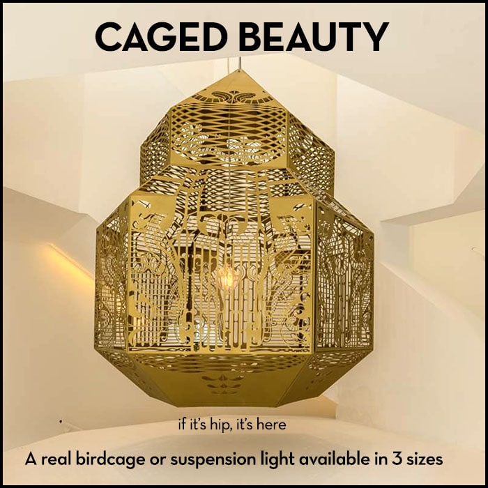 Read more about the article Caged Beauty : A Birdcage Or A Suspension Light.