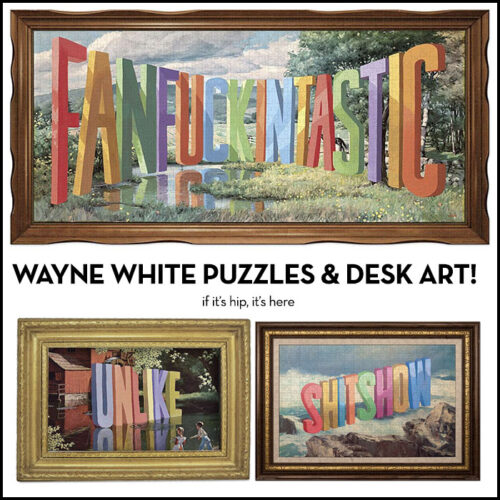 Read more about the article Wait, What? Wayne White for Genuine Fred? Yes Please!
